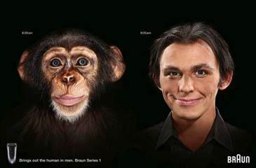 pub-rasoir-geek-braun-chimpanzé
